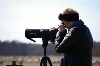 binoculars-2194231_1920