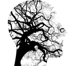 mental-health-2313430_1280